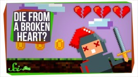 can you die from a broken heart