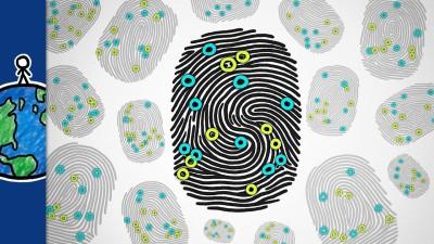 How Chaos Makes Your Fingerprints Unique