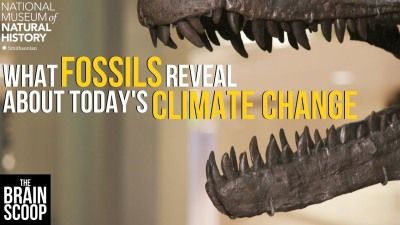 What Fossils Reveal About Today's Climate Change