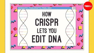How CRISPR lets you edit DNA - Andrea M. Henle