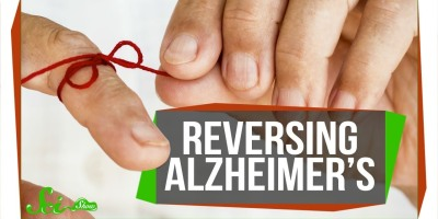 Researchers Reverse Alzheimer's Memory Loss (in Mice)