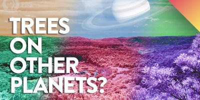 What Would Trees Look Like On Other Planets?