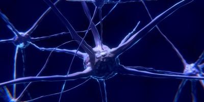 Sleep Deprivation Increases Alzheimer's Risk