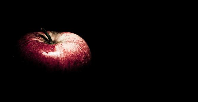 Apple Isaac Newton Gravity