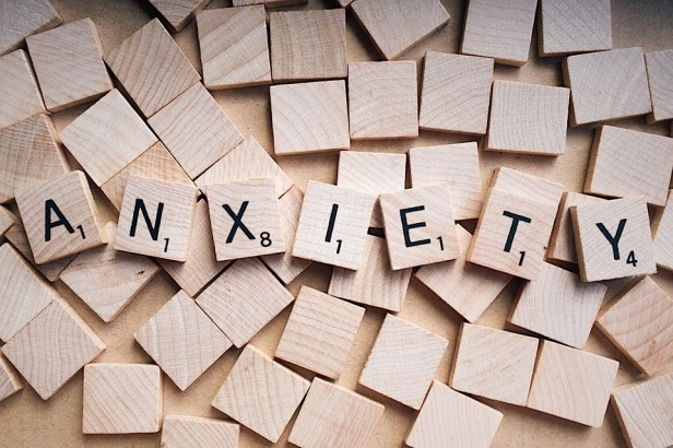 anxiety cells identified in brains hippocampus