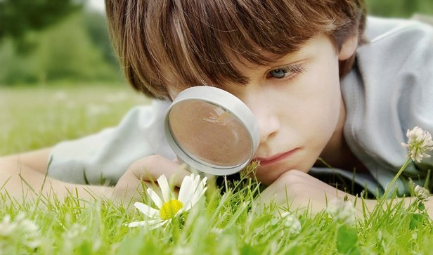 Curiosity Changes The Brain To Enhance Learning
