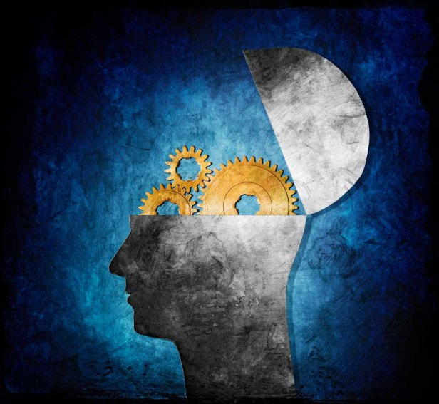 Study Says The Brain Forgets in Order to Conserve Energy