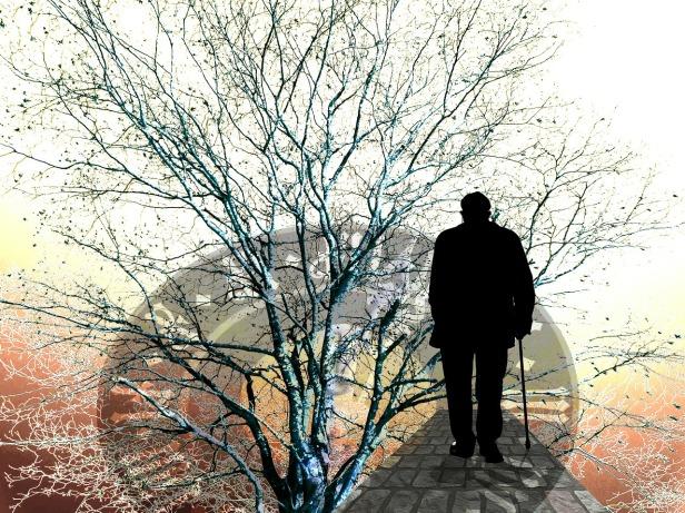 Alzheimer's Disease, Dementia, Forgetfulness, Memory Loss
