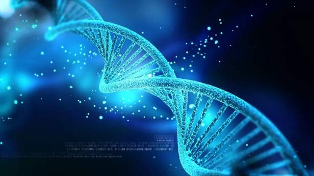 Gene Therapy Restores Immunity In Patients With Rare Immunodeficiency