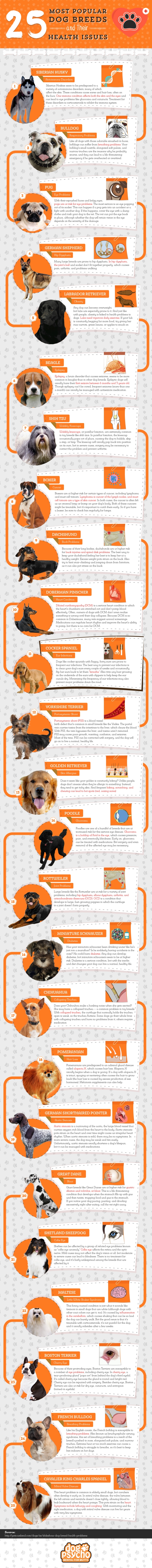 dog breeds health issues